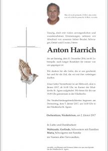 harrich-anton